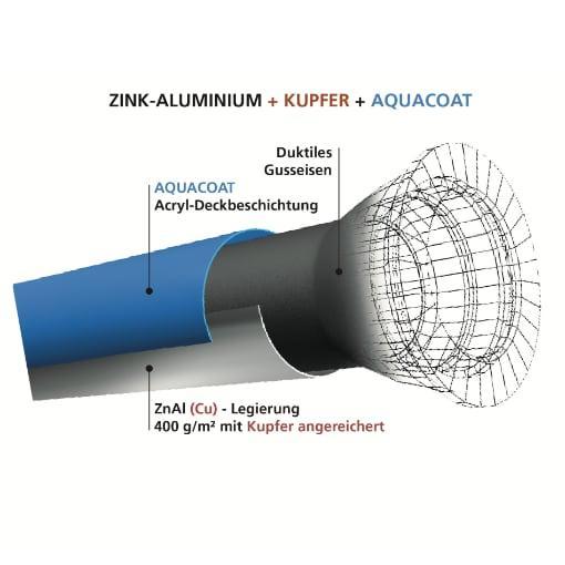 Schema BioZinalium